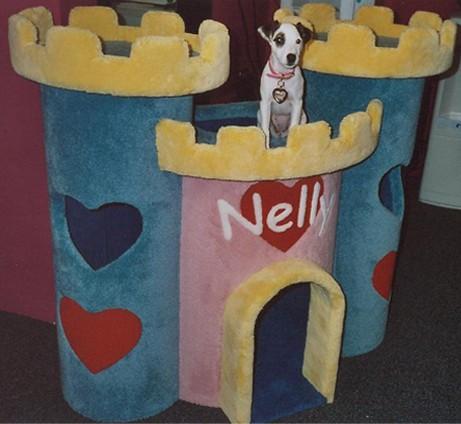 Doggy Castle