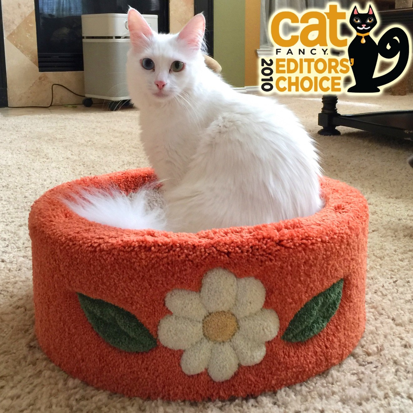"Shown with Daisy Inlays with ""Pumpkin"" carpet & ""Cream"" daisy. This customer has left a review, with the title ""Superb"". Click reviews to read Tina's review!"