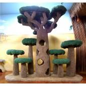 African Baobab Kitty Sanctuary