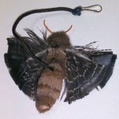 Moth Cat Toy
